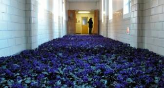 28.000 fiori riempiono le stanze di un centro di salute mentale
