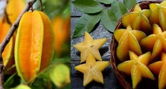 15 frutti particolari dei quali sicuramente non conoscevi nemmeno il nome