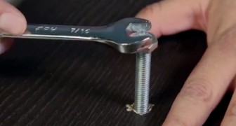 Here's the trick to tighten or loosen a screw if you haven't got the right tools