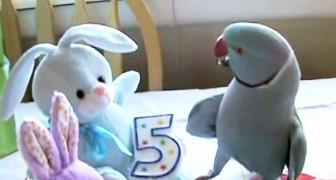 Ze krijgt een knuffeldier voor zijn verjaardag: haar reactie is hilarisch!