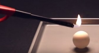 He sets fire to a ping-pong ball ... what happens shortly after is really fascinating !
