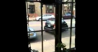 Donna incapace a parcheggiare una smart