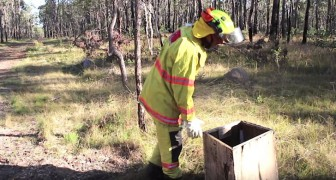 A firefighter finds a box in the woods ... and his life changes forever
