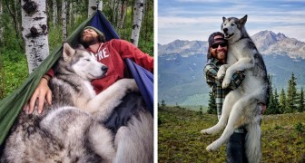 Porta il suo lupo in un viaggio EPICO perché odia vedere i cani rinchiusi in cortile