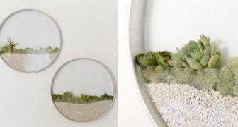 Ommuurde mini-tuin: een betoverende oplossing voor liefhebbers van planten en design ontwerpen