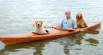 Un homme construit un kayak sur mesure car il ne veut pas laisser ses chiens à la maison