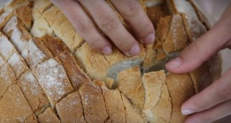 You've got some old bread ? Start cutting it and create this delicious recipe
