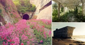 La rivincita della Natura: 10 stupende immagini che vi lasceranno senza parole