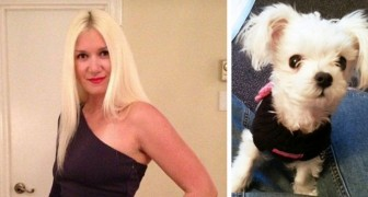Sie wirft ihren Hund aus dem Fenster, nach einigen Monaten jedoch bezahlt sie teuer dafür