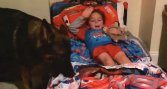 Here's what this child and his dog do every night before going to bed