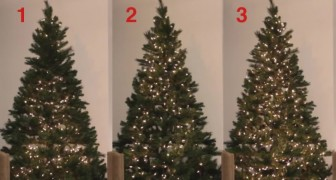 Discover 3 ways to put Christmas lights on your tree ... Which one do you prefer?