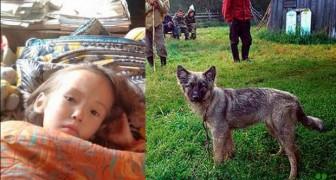 Elle survit 12 jours dans le bois grâce à son chien: ça ressemble à un miracle mais c'est la réalité