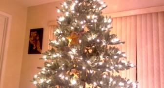 Parece uma árvore de Natal, mas olhe com mais atenção...