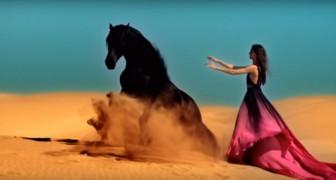 Ze roept het paard naar zich toe... het spektakel dat daarna losbarst is adembenemend