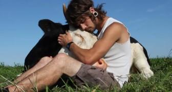 Un garçon assis à côté d'une vache: leur rapport est phénoménal