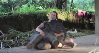 Een 2 weken oude olifant bezorgt haar een ONVERGETELIJK moment
