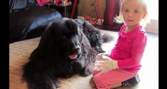 Mamma le dice di abbracciare il cane: l'amore che si scambiano è indescrivibile