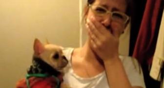Elle dit à son chien Je t'aime mais elle ne s'attendait pas qu'il lui réponde COMME CA!