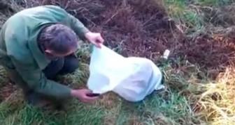 Un homme trouve un sac au milieu d'un terrain... Son contenu va vous révolter