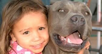 La commovente storia di Zack, il cane che adorava la figlia dei suoi proprietari