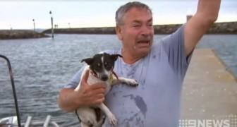 Perde il suo cane in mare... ma una barca in arrivo gli rivela una notizia che lo sconvolge