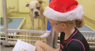 Una bambina legge un libro davanti alla gabbia di cane... Il motivo è una sorpresa