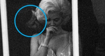 Deze foto's van 'gestolen momenten' laten ons een andere kant van deze beroemde personen zien
