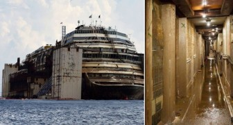 Uno dei naufragi più gravi della storia: ecco la Costa Concordia prima e dopo il disastro