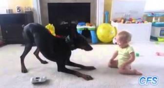 Les chiens aiment les enfants