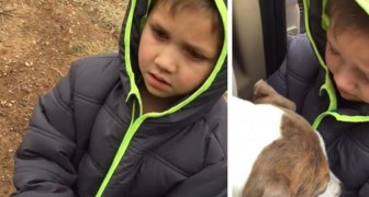 Il retrouve son chien après un mois: sa réaction laisse tout le monde sans voix