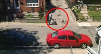 Un uomo anziano cammina in strada: ciò che fa il cane ci mostra il significato dell'amicizia
