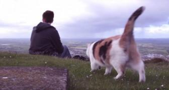 Un ragazzo e il suo gatto cieco scalano una montagna: il motivo è dolcissimo