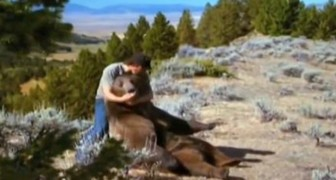 Een man vindt een beertje naast zijn overleden moeder. In ruil voor zijn redding biedt de beer de man zijn vriendschap aan