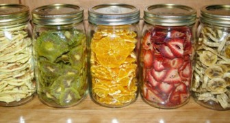 Healthy delicious homemade dehydrated snacks!