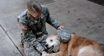 Dit meisje keert terug van een missie: de reactie van haar hond is prachtig!