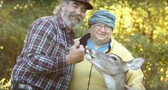 Salvano un cerbiatto non vedente, ma poi sarà lui ad aiutare la coppia in un modo speciale