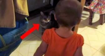 Une petite fille s'approche de son chat: ne manquez pas leur conversation hilarante