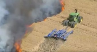 The harvest is burning! --- Here is how a farmer manages to stop the fire -- What courage!