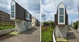 Il terreno era troppo piccolo per costruirci una casa: un architetto ha trovato la soluzione
