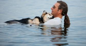 18 anni fa il cane gli salvò la vita: oggi l'uomo trova il modo di ringraziarlo