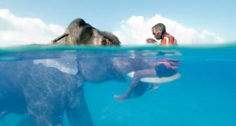 Lasciatevi incantare da queste 8 foto scattate dai maestri della fotografia National Geographic