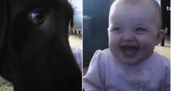 Il cane mangia pop-corn... e la bambina? non riesce a smettere di ridere!