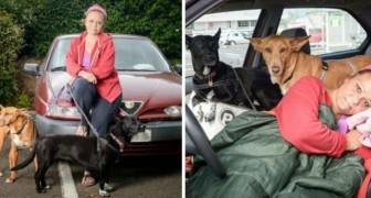 Nel suo alloggio non sono ammessi i cani: così questa insegnante fa una scelta RADICALE