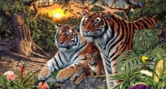 Le tigri sono molto abili nel mimetizzarsi: riesci a dire quante ce ne sono nell'Immagine?