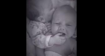 Il piccolo inizia a piangere, ma suo fratello gemello sa bene come farlo smettere...