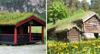 I tetti verdi norvegesi: le suggestive immagini di una tradizione antichissima