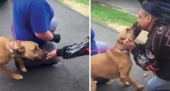 Er findet seinen Hund wieder, den er vor ewigen Zeiten verloren hat. Ihr Treffen macht Gänsehaut