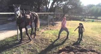 Die Kinder beginnen mit einem Tanz. Die Reaktion des Pferdes ist unglaublich