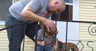 The little boy's head is stuck in the step railings --- See how he manages to get free!