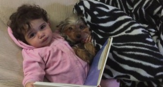 This little girl and her dog do this every night --- their cuteness is irresistible!